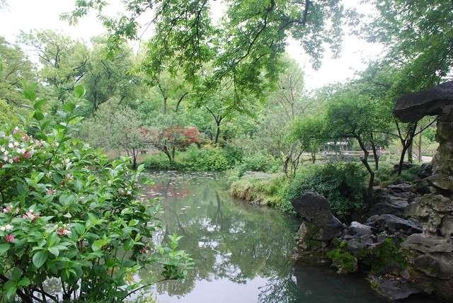 El jard n chino informaci n general china tips de for Chino el jardin