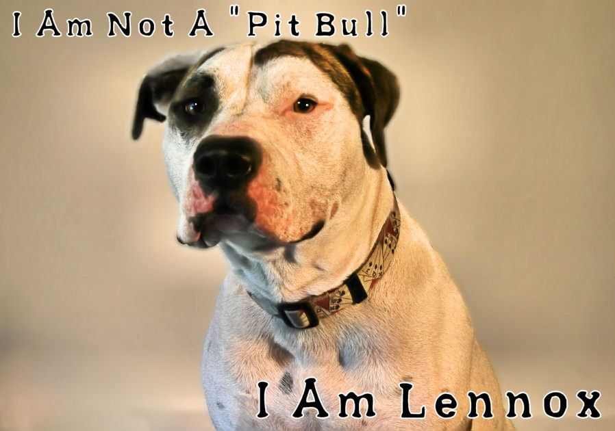 The Save Lennox Campaign FaceBook